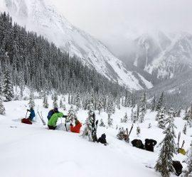 avalanche training