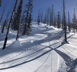 Ski touring and Splitboarding