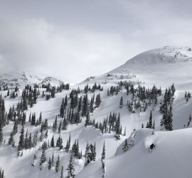 Ski guides in Backcountry