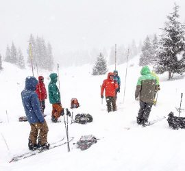avalanche course training