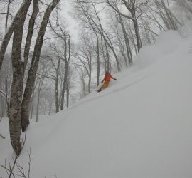 all aspects alpine Hakuba Trip